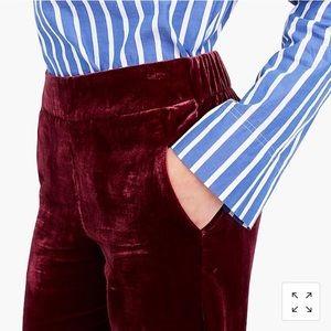 burgundy velvet pants; NWOT
